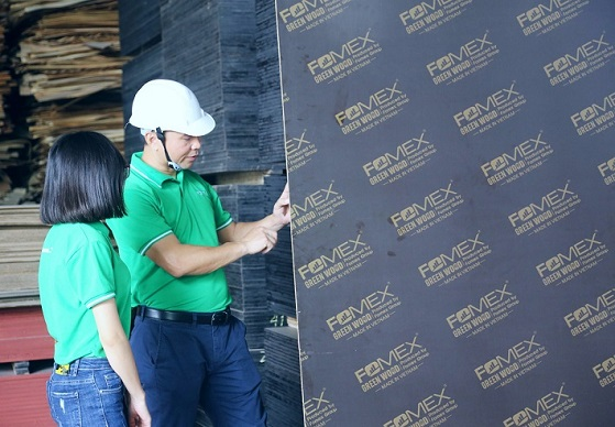 FOMEX FILM FACED PLYWOOD FACTORY